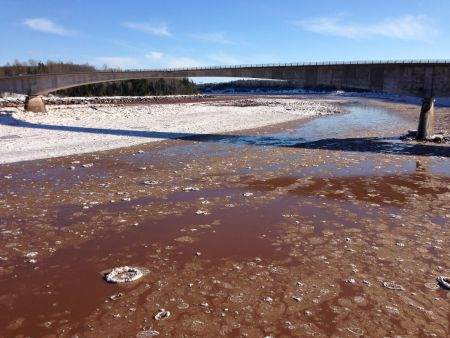 The Shubenacadie River is part of a delicate and unpredictable tidal river system.
