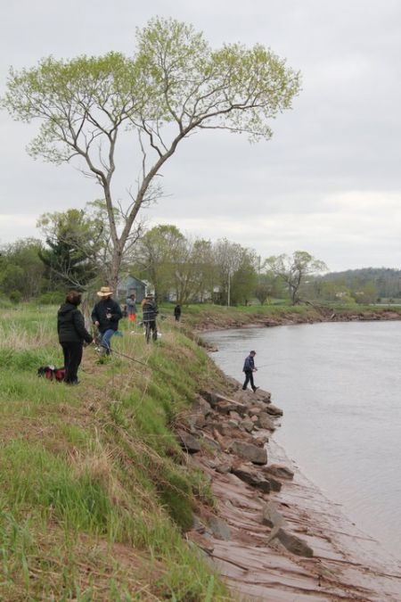 Fishing off the Shubenacadie River dyke.