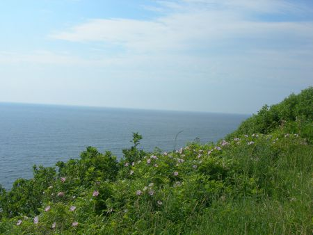 The Gulf of St. Lawrence as seen from the Ceilidh Trail in Cape Breton Highlands National Park, NS [Photo: Jimmy Emerson]