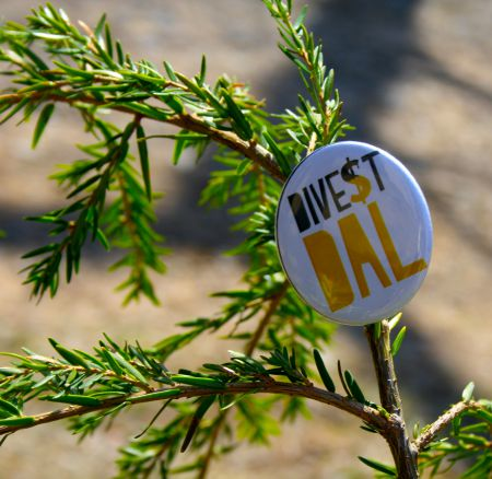 "Divest Dalhousie decorate their tree with a ""Divest Dal"" pin to encourage divestment away from fossil fuels. [Photo: Kendra Lovegrove]"