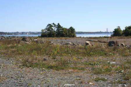 Crosby Island, the treed area shown in in the background, is now entirely land-bound as a result of the Waterfront Development Corporation infill activities.  Protesters want it restored to its old state.  Photo by Robert Devet