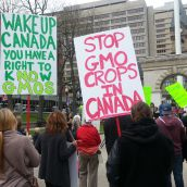 Nova Scotians call for a ban on genetically modified foods