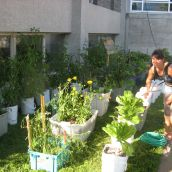 Sarah McLean, CAF member, exhibits some of the container grown plants, including pepper plants and leafy greens.