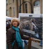 Rally for our Forests was organized by the Ecology Action Centre and Save Caribou