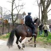 Journalists are chased away by a police horse gone wild