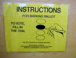VOTE! [Photo: Muffet]