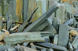 Basalt Shards on the Bay of Fundy coast Photo credit copyright Stephen Patterson