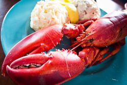 Nova Scotia Lobster Supper. By Benson Kua.