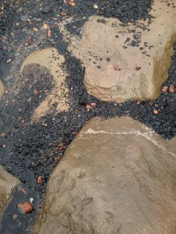 Coal sand