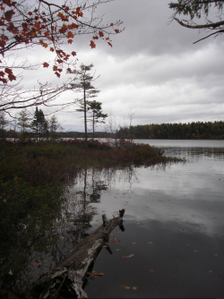 The proposed development borders Second Lake, a pristine water body in a protected Lower Sackville park (Robert Devet photo).