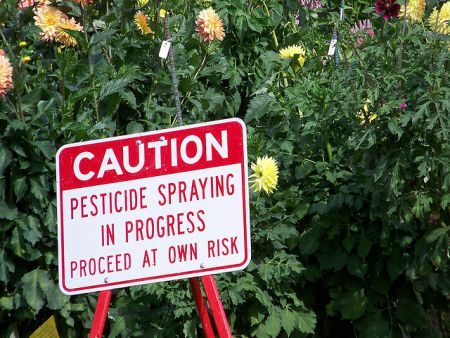 HRM's pesticide bylaw requires posting warning signs before spraying of controlled pesticides, a protection Pesticide Free Nova Scotia says is worth keeping.  Photo: jetsandzeppelins